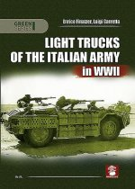 Light Trucks of the Italian Army in WWII