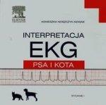 Interpretacja EKG psa i kota
