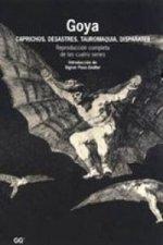 Goya : caprichos, desastres, tauromaquia, disparates