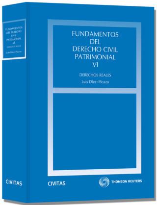 Fundamentos del derecho civil patrimonial VI : derechos reales