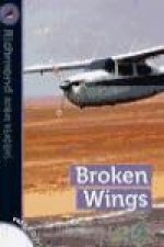 Broken wings, level 6