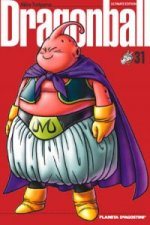 Dragon Ball 31