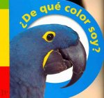 De Que Color Soy? = What Color Am I?