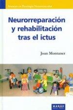 Neurorreparación y recuperación tras el ictus