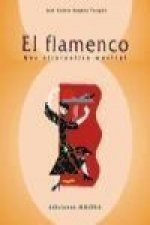El flamenco : una alternativa musical