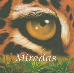 Miradas = In the Blink of an Eye