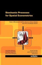 Stochastic Processes for Spatial Econometrics