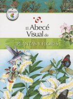 El Abece Visual de Plantas y Flores = The Illustrated Basics of Plants and Flowers