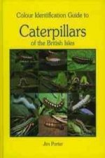 Colour Identification Guide to Caterpillars of the British Isles. Macrolepidoptera