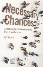 Necessary Chances: Synchronicity in the Encounters That Transform Us