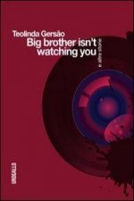 Big brother isn't watching you e altre storie