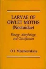 Larvae of Owlet Moths (Noctuidae): Biology, Morphology and Classification