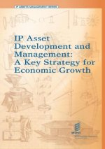 IP Assets Development and Management