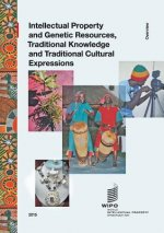 Intellectual Property and Genetic Resources, Traditional Knowledge and Traditional Cultural Expressions