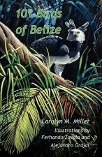 101 Birds of Belize