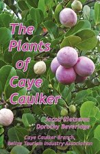 The Plants of Caye Caulker
