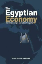 The Egyptian Economy: Current Challenges and Future Prospects