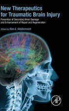 New Therapeutics for Traumatic Brain Injury