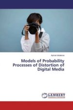 Models of Probability Processes of Distortion of Digital Media