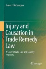 Injury and Causation in Trade Remedy Law