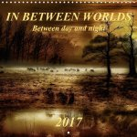 In between worlds - between day and night (Wall Calendar 2017 300 × 300 mm Square)
