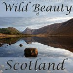 Wild Beauty of Scotland (Wall Calendar 2017 300 × 300 mm Square)