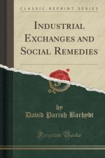 Industrial Exchanges and Social Remedies (Classic Reprint)