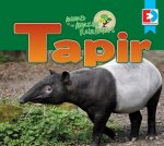 Animals of the Amazon Rainforest: Tapir