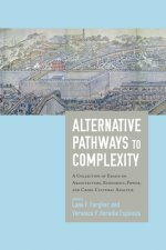 Alternative Pathways to Complexity: A Collection of Essays on Architecture, Economics, Power, and Cross-Cultural Analysis