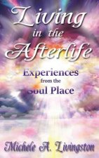 Living in the Afterlife - Experiences from the Soul Place