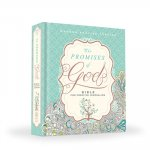 The Promises of God Creative Journaling Bible: Modern English Version (Mev)