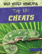 Top 10: Cheats