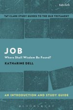Job: An Introduction and Study Guide: Where Shall Wisdom Be Found?