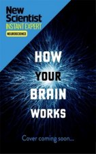 How Your Brain Works: Inside the Most Complicated Object in the Universe