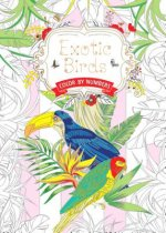 Exotic Birds: Color by Numbers