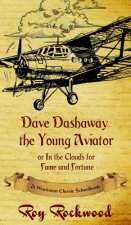 Dave Dashaway the Young Aviator