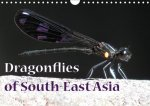 Dragonflies of South-East Asia (Wall Calendar 2017 DIN A4 Landscape)
