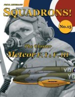 Gloster Meteor F.I & F.III
