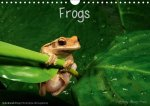 Frogs / UK-Version (Wall Calendar 2017 DIN A4 Landscape)