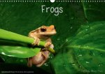 Frogs / UK-Version (Wall Calendar 2017 DIN A3 Landscape)