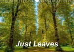 Just Leaves (Wall Calendar 2017 DIN A4 Landscape)