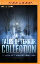 Tales of Terror Collection: A Night in Whitechapel, Was It a Dream?, Caterpillars, John Mortonson's Funeral