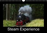 Steam Experience 2017