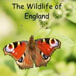 Wildlife of England 2017