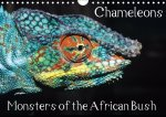 Chameleons Monsters of the African Bush 2017