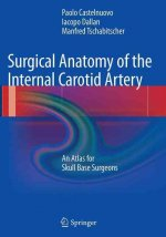 Surgical Anatomy of the Internal Carotid Artery
