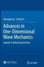 Advances in One-Dimensional Wave Mechanics
