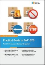 Practical Guide to SAP GTS. Pt.2