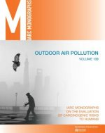 Outdoor Air Pollution: IARC Monographs on the Evaluation of Carcinogenic Risks to Humans