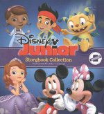 Disney Junior Storybook Collection: Sofia the First, Doc Mstuffins, Jake and the Neverland Pirates, Mickey/Minnie, Henry Hugglemonster